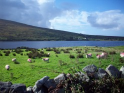 Connemara, Ireland Images