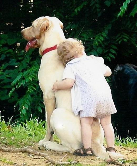 little child hugging a large dog - adorable!