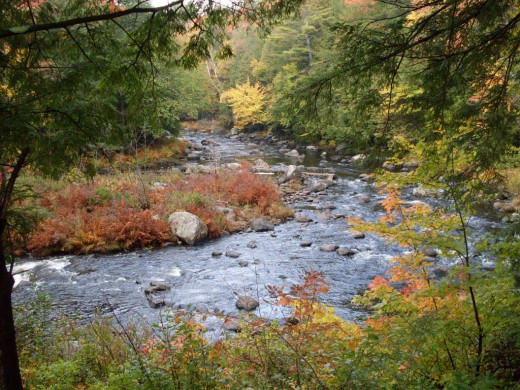 A rapid river blending in beautifully with the fall colors