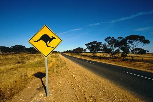 Señal de peligro de canguros