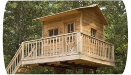 Here to download Tree House Plans and 14,000 Other Woodworking Plans