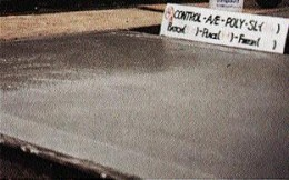 Figure 4. Plastic vapor barriers aggravate bleeding problems. Concrete on the left part of the slab is placed on a vapor barrier, concrete on the right on a granular base. Note the water sheen still present over the vapor barrier.