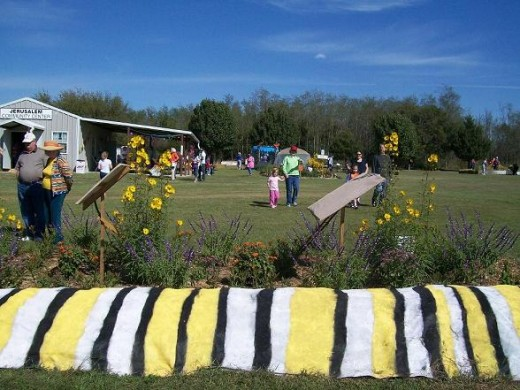 The caterpillar, nectar garden and lawn view north  to the blue butterfly holding tent.