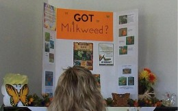 Got MILKweed?  Artwork by the Blanchard 4-H capable kids.  Milkweeds are the ONLY host plants for Monarch butterfly larvae.
