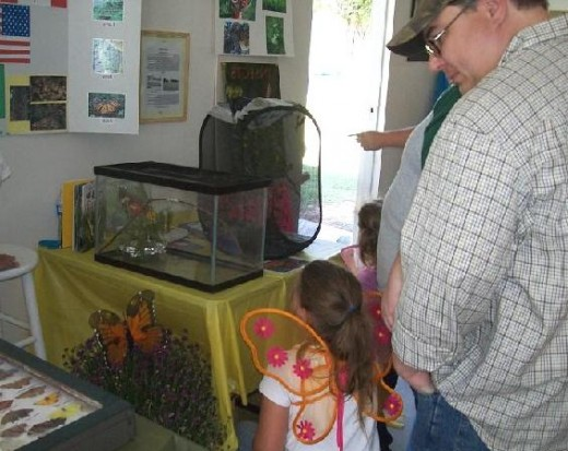 A proud dad studies the butterfly exhibits with his very interested daughter.