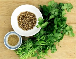 Essential Oils: Coriander