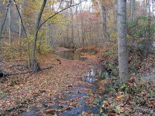The Rockville area offers urban amd natural vistas in close proximity.