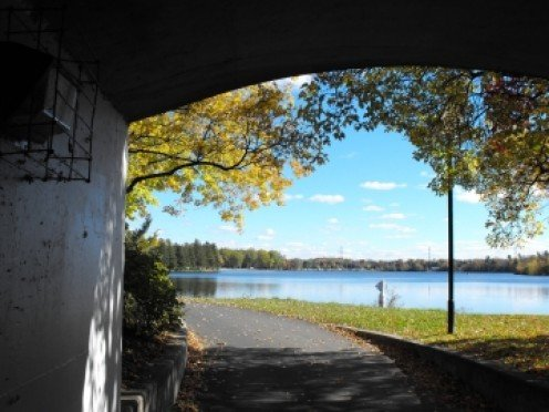 Mooney's Bay ... Hogs Back on the left and the tunnel to the locks to the right of Hogs Back in this view