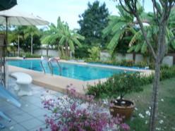 Pool with banana trees.