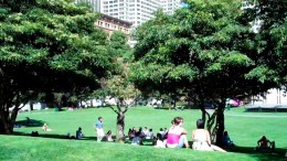 Lovely lawn area - perfect for a picnic!