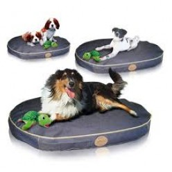 Pet Supplies Beds