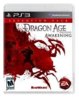 Dragon Age: Awakenings is only about half as long as Origins, but what it does have is as fun to play, if not more fun, than the original.