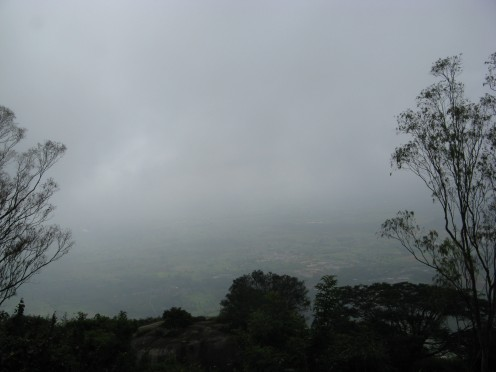 Nandi covered in mist