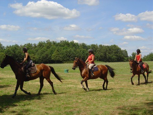 Tales of witches and horse shows on the banks of Videix Lakes