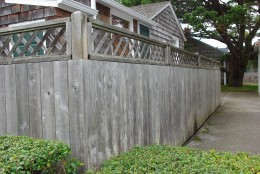 Nicely Weathered Privacy Fence