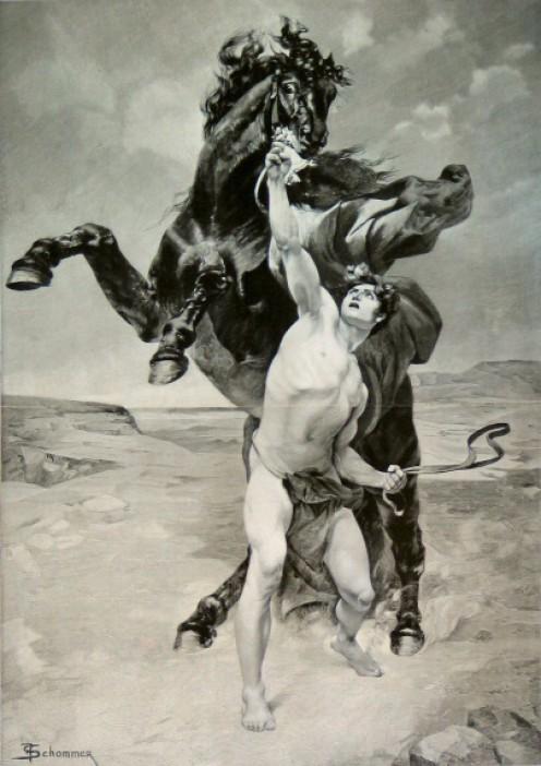 Alexander Taming Bucephalus by F. Schommer