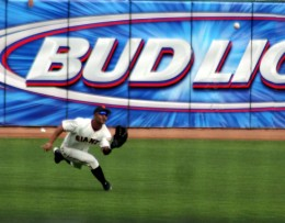 Fabulous catch in the outfield