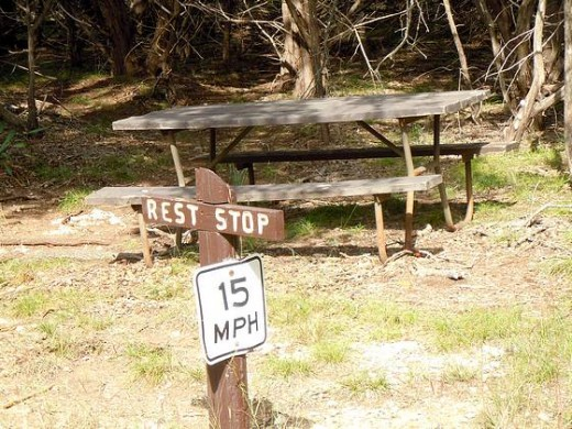 Typical Campground Humor.  A Resting area for walkers, along with a Speed Limit.