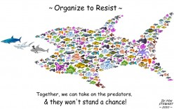 Grassroots Activist: Resources for Community & Web-based Networking Activism