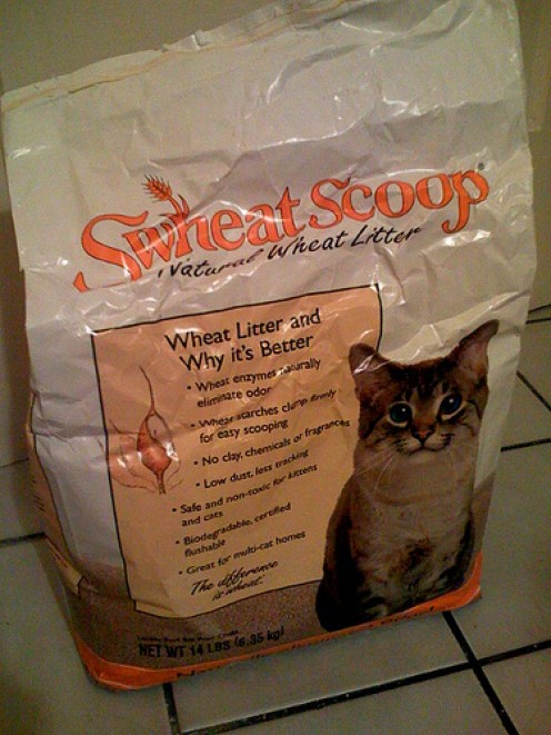 Cat Litter Reviews:  Brand Reviews and The Best Clumping Cat Litter