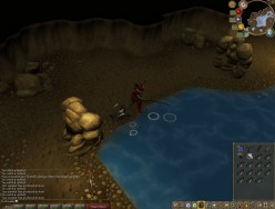Runescape Cooking - Feel the Burn:How To Cook Rocktail Fish Without Burning: What You Do From Level 93 to 95