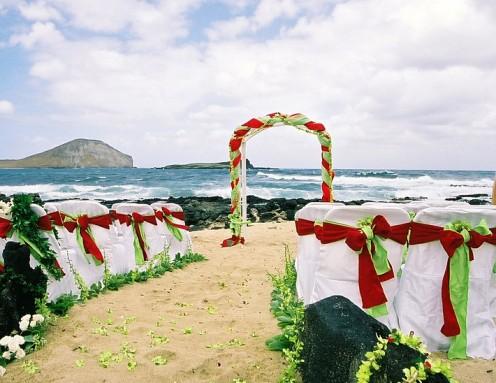 A Christmas themed wedding on the beach.