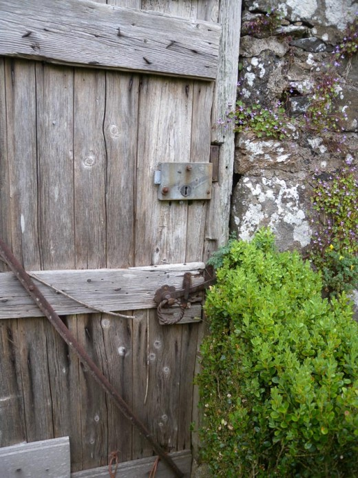 The door to the walled garden... can you hardly wait to open it?