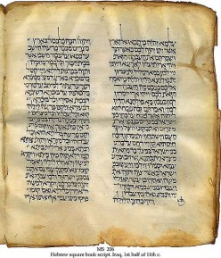 Antique HEBREW BIBLE Page