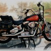 The Essential Guide to Motorcycle Maintenance and Cleaning
