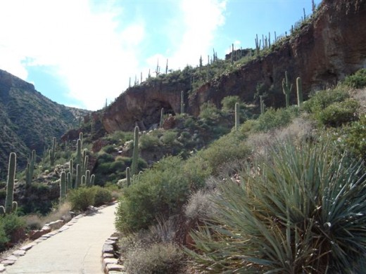 At the top of the hill to the right of the clouds is a second cliff dwelling. It must be hiked to, but appointments can be made to go up with a ranger.