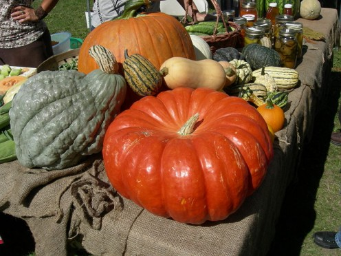 Some of the Autumn Fare grown by our locals.