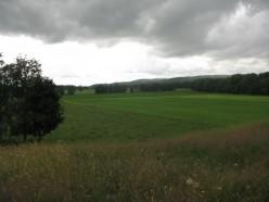 Wildlife Conservation in an Agricultural Landscape