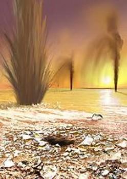 Martian geysers