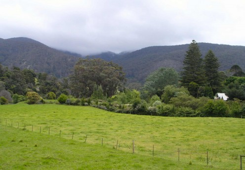 Typical South Coast scenery near Bega
