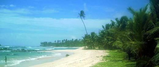Midigama Surf beach, Southern Coast of Sri Lanka Holidays