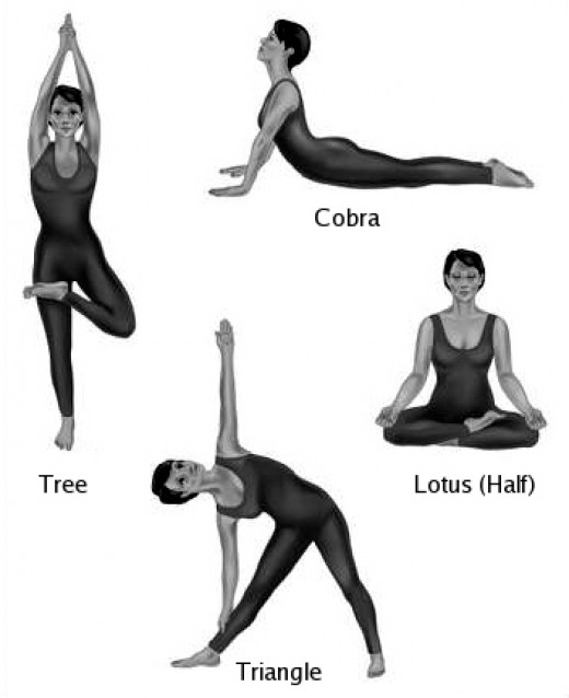 Yoga exercises or yoga beginner apps directories