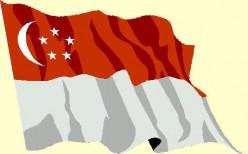 Singapore's Flag