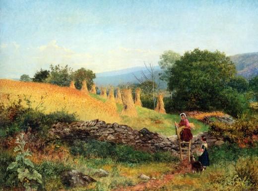 A Welsh Cornfield