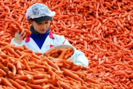 Not offloading a commodity warrant before expiry can have disastrous consequences - like having to take possession of the underlying stock. What ARE you going to do with all of those carrots?