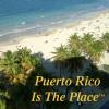puertoricoplace profile image