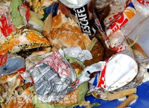 Social Impact - Food Waste in American Fast Food Restaurants