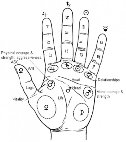 Reading Palms and Palmistry - Anything in it? | hubpages