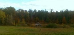 Wooded gazebo amidst vibrant foliage