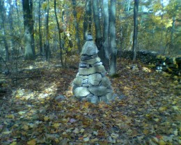 Stone Pillar in the woods