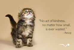 Acts of Kindness and its Forms