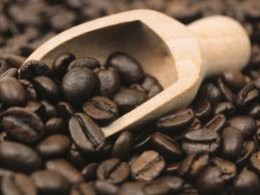 Buy Coffee Beans
