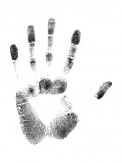 What is Palmistry?