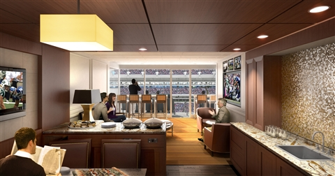 It may be chilly outside, but you could always entertain in a cozy indoor suite at MetLife.