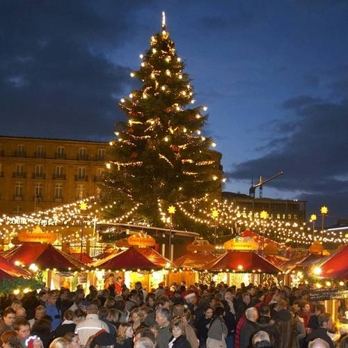 The Christmas Market of Cologne has the tallest Christmas tree in the region.