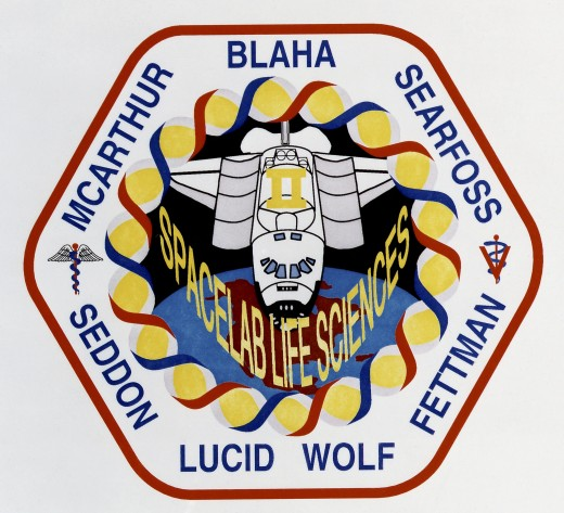 The Double Helix is represented around the Space Lab patch of Space Shuttle Columbia.